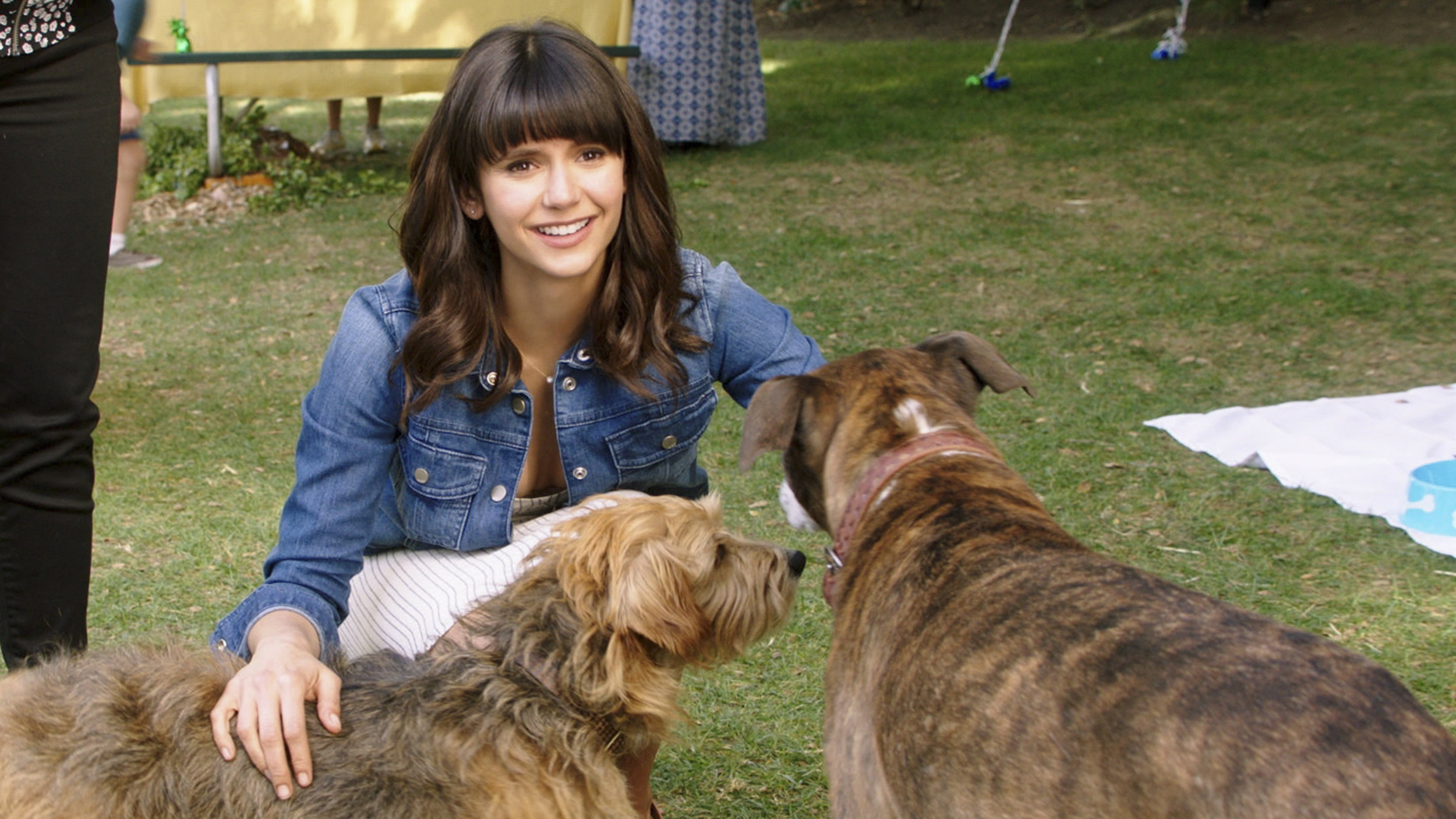 Nina Dobrev plays a morning news host and dog-lover in Dog Days.