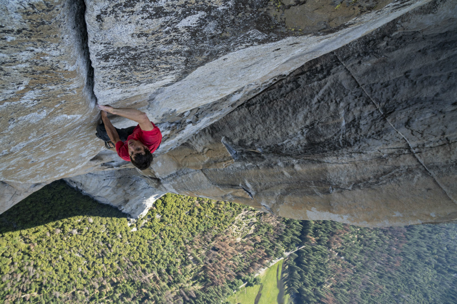 A typically thrilling scene from Free Solo.