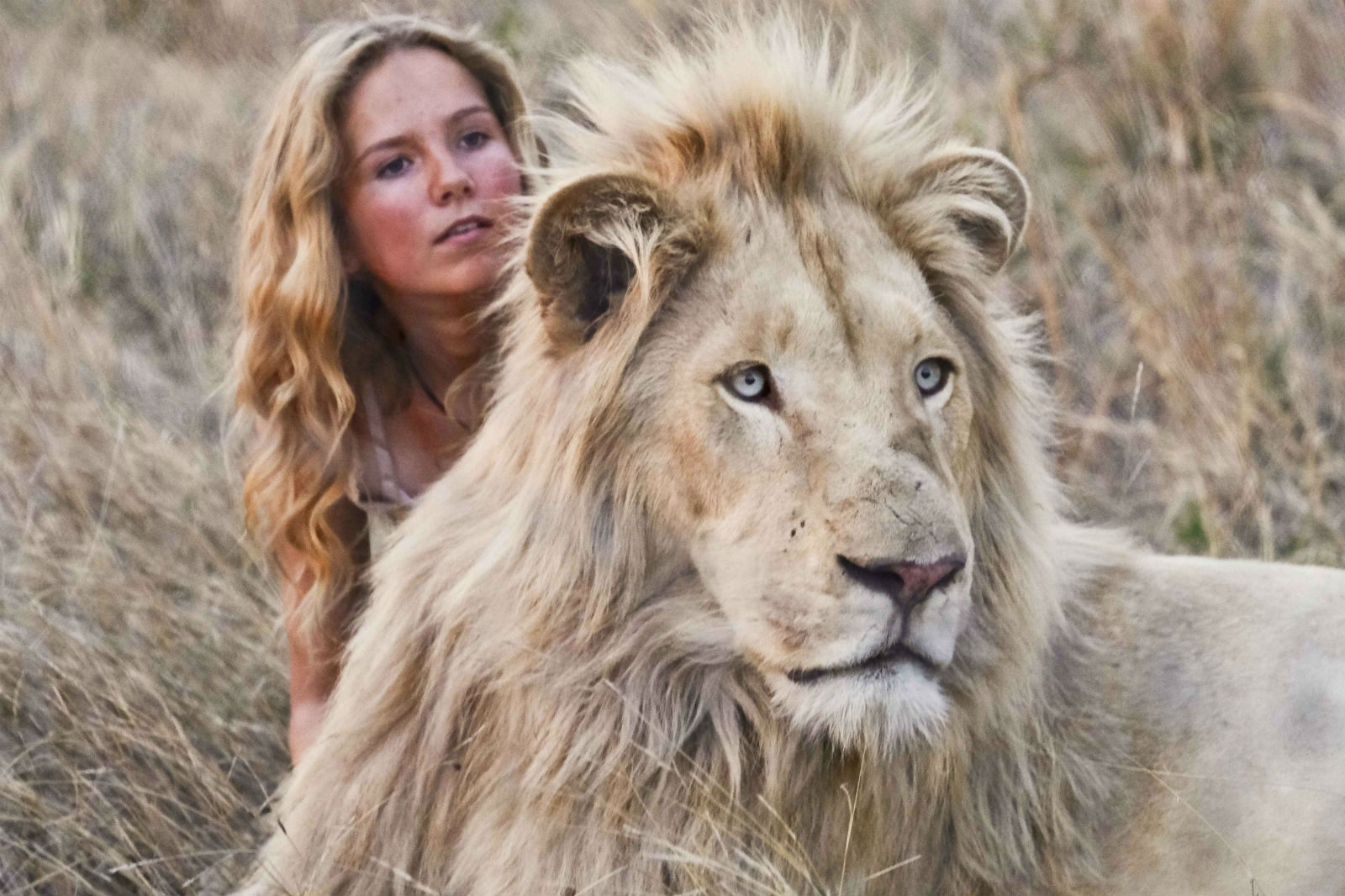 A scene from Mia and the White Lion.