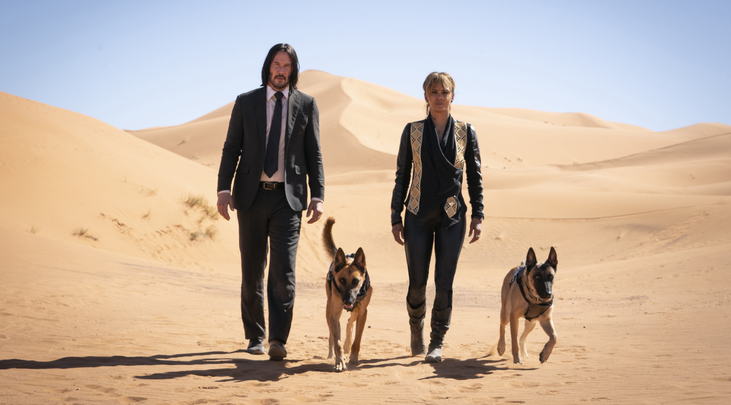 Putative good-guy assassins Keanu Reeves and Halle Berry (and dogs) looking for answers in a dry place