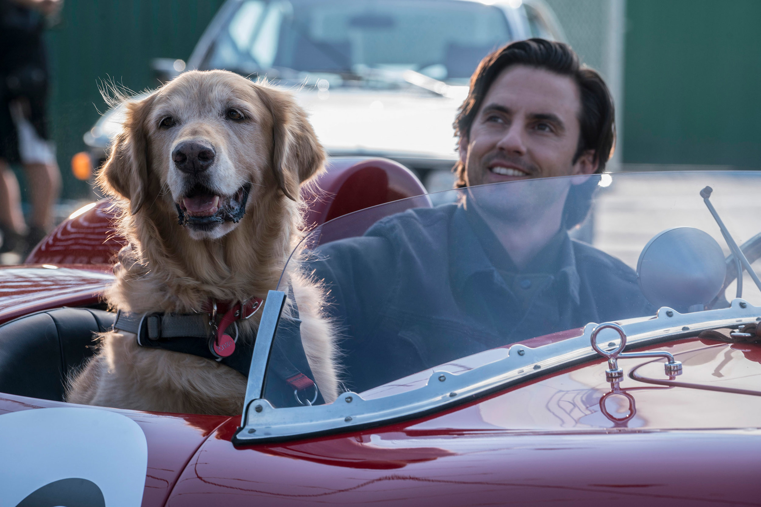 Enzo and his race car driver buddy Denny in The Art of Racing in the Rain