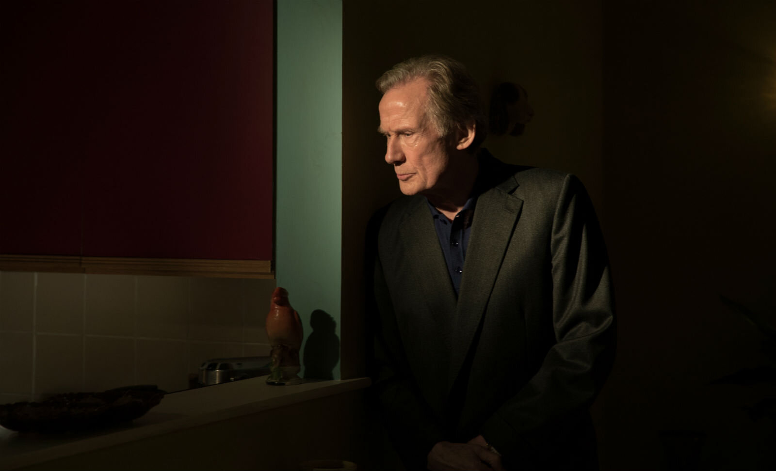 The redoubtable Bill Nighy.