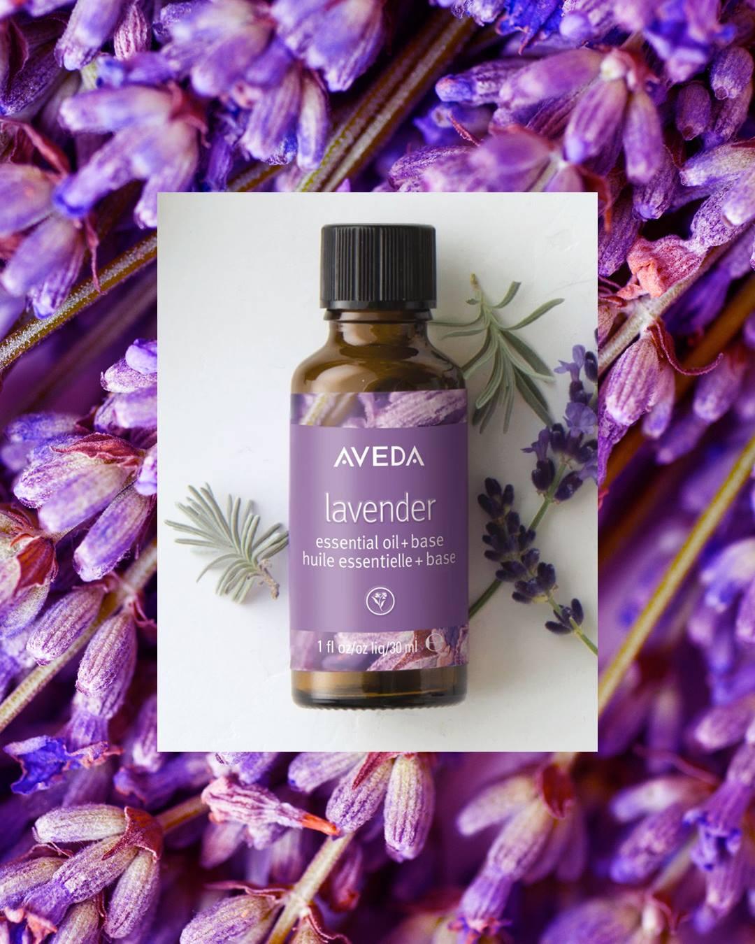 lavender aveda essential oil.jpg