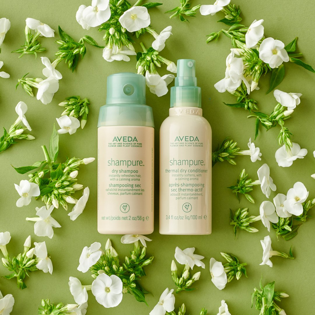 shampure dry shampoo and conditioner.jpg