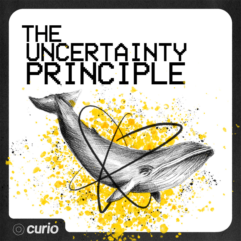 "- Secondly, we cannot wait for the LIVE LAUNCH of our BRAND NEW science communication podcast, ""The Uncertainty Principle"". This show has been in the works for a while now, so we are extremely stoked to be launching it with four shows at Rigby's Bar on the 8th, 10th, 14th and 16th of February!Each night will tackle a different major topic from the world of STEM, along with a discussion of the ways this topic intersects with history, society, politics and culture. Your hosts are Taryn Laubenstein, and Ben McAllister, with special guests along the way!Find out more and get tickets here."