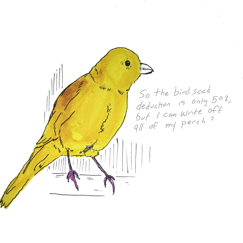 canary_marker.jpg