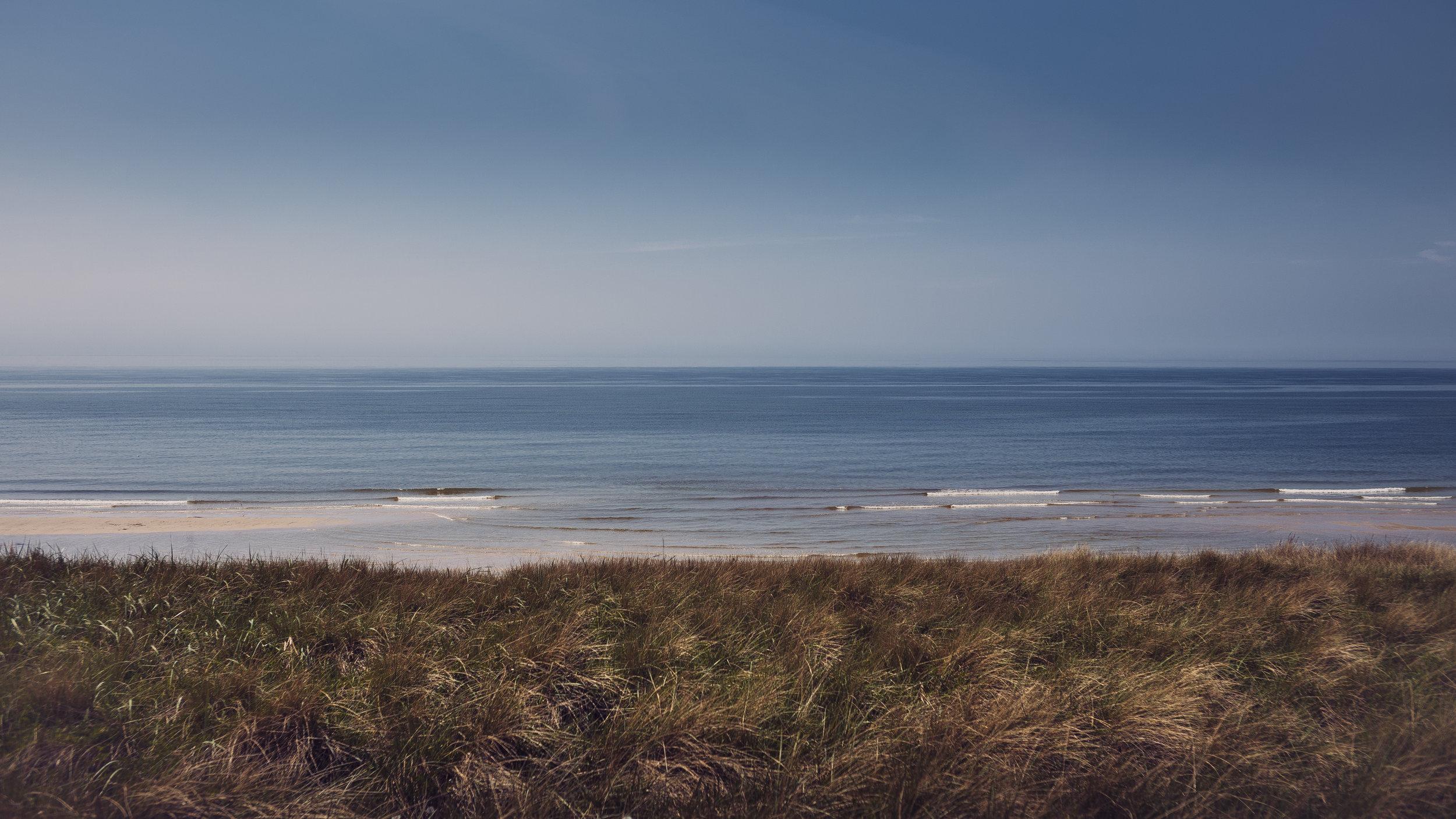 Strandmuschel_Insel.jpg