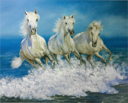3 white horses by the sea