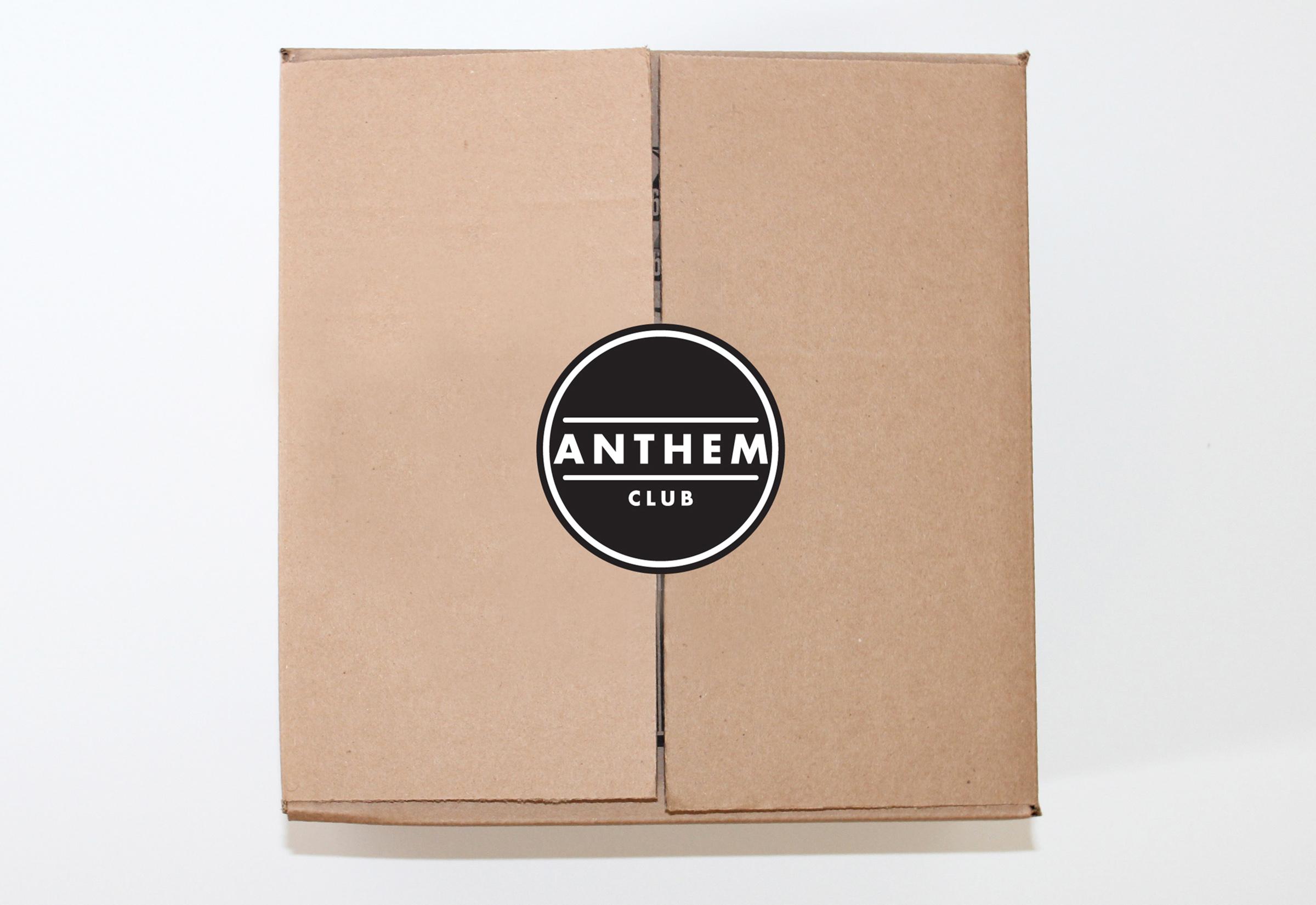 Anthem How 6.jpg