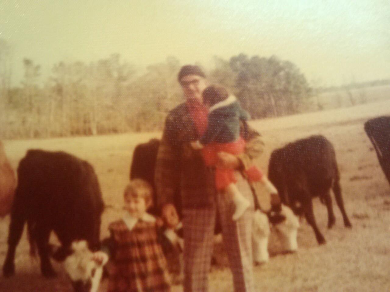 Papa Campbell & his cattle