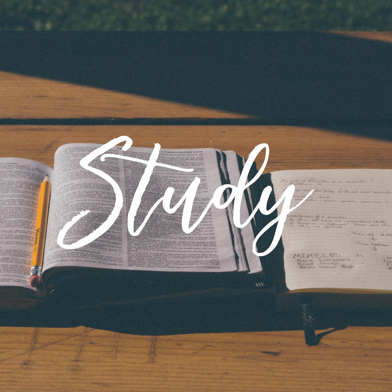 Study Bible.jpg