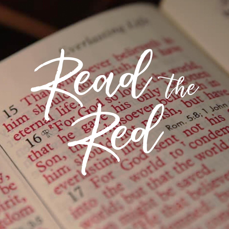 Read the Read Bible.jpg