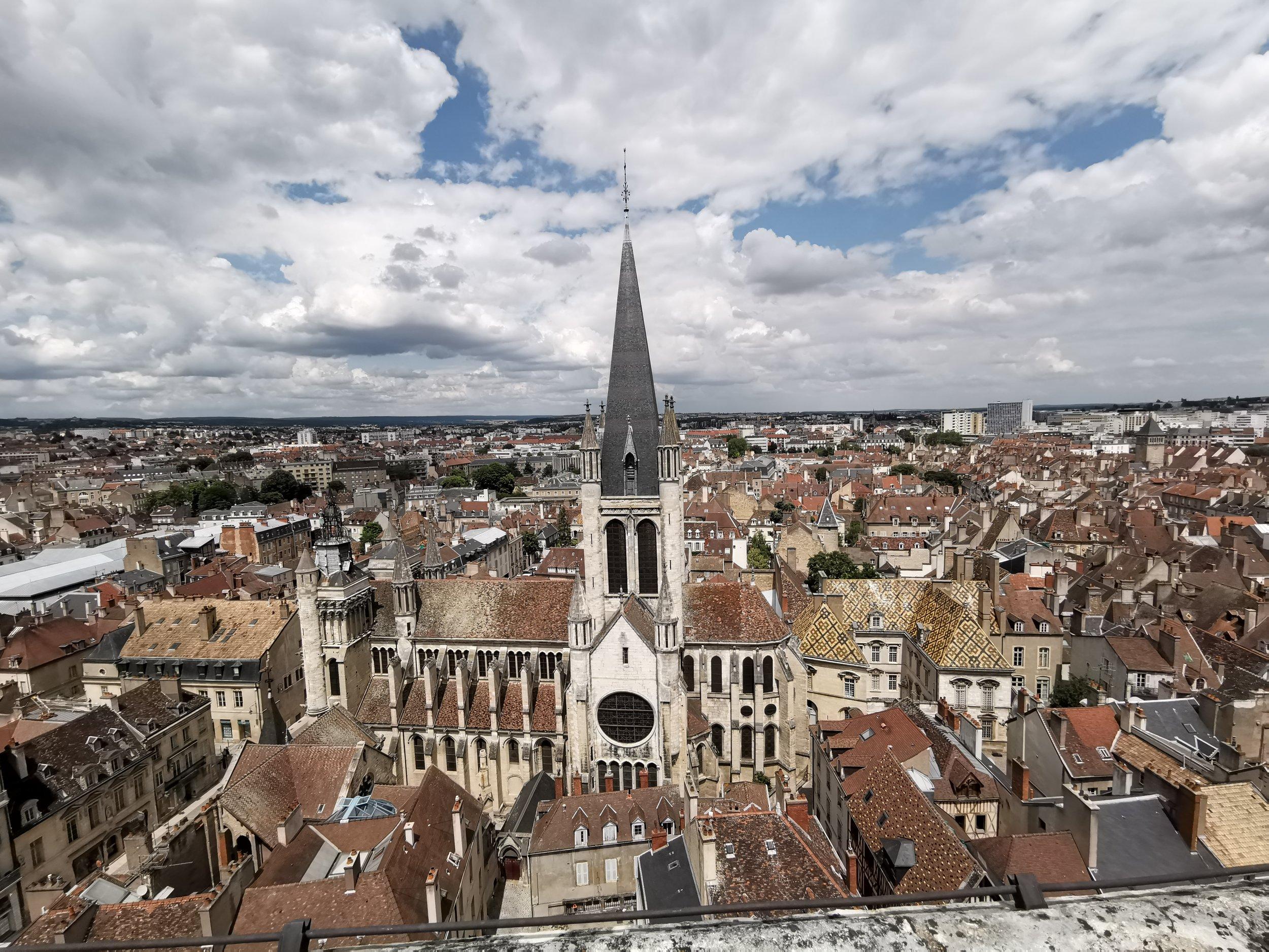 Dijon viewpoint