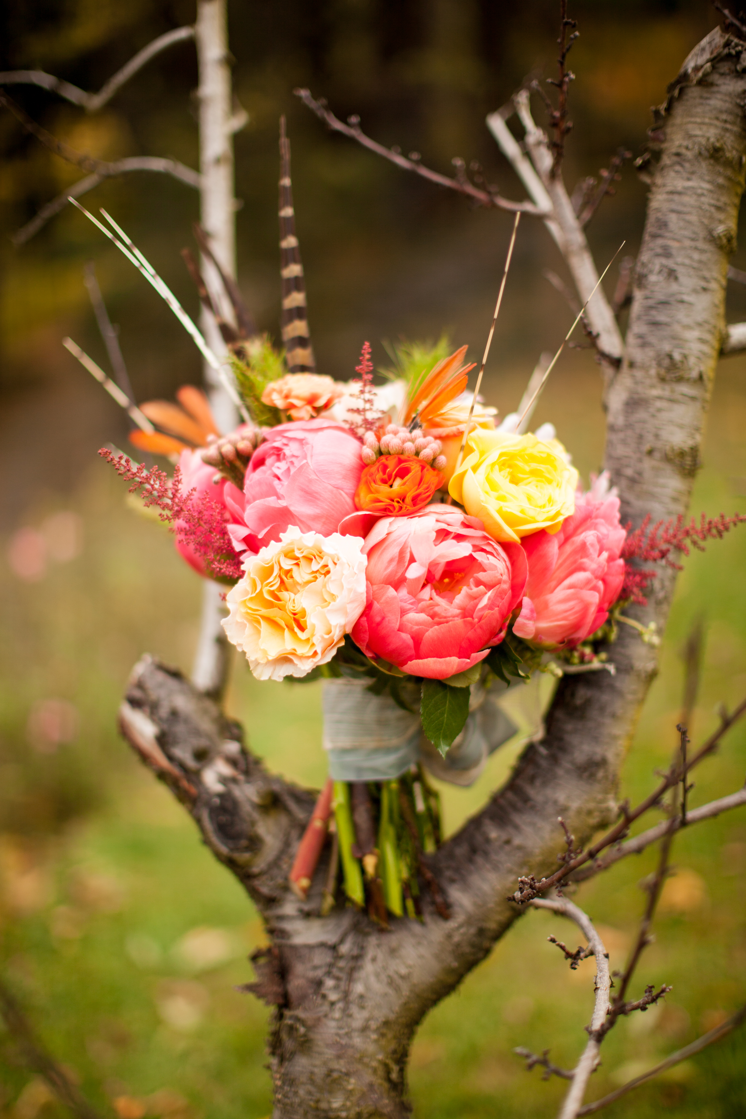 Bright coral charm peony bouquet