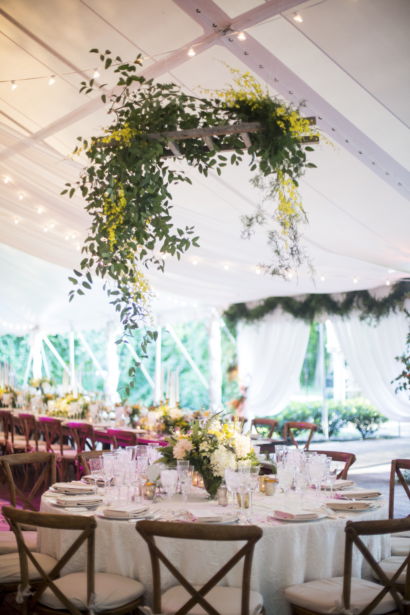 Hanging smilax and oncidium orchids in tent ceiling