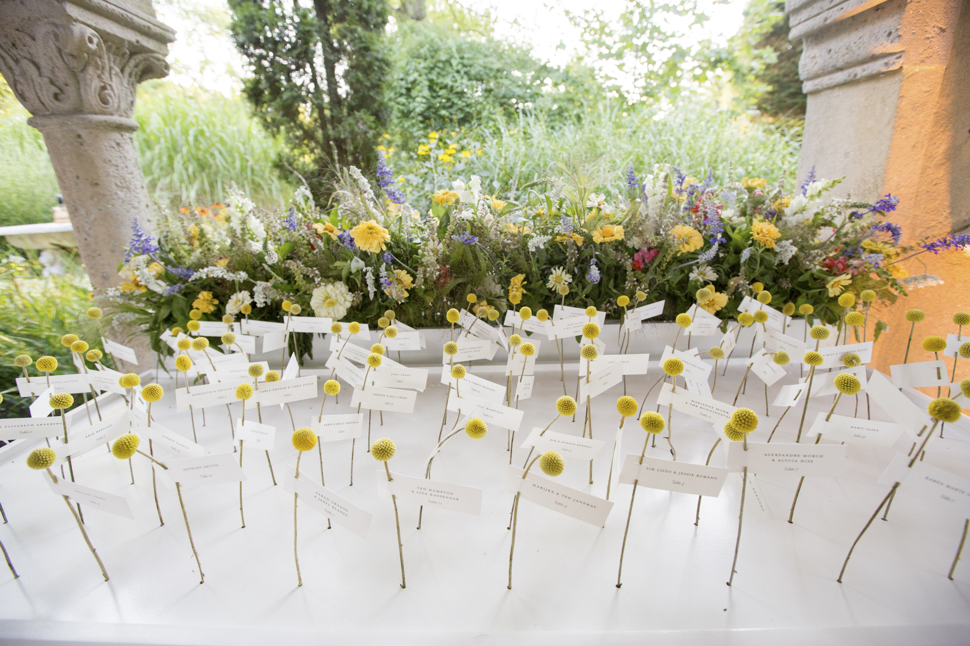 Craspedia escort card display