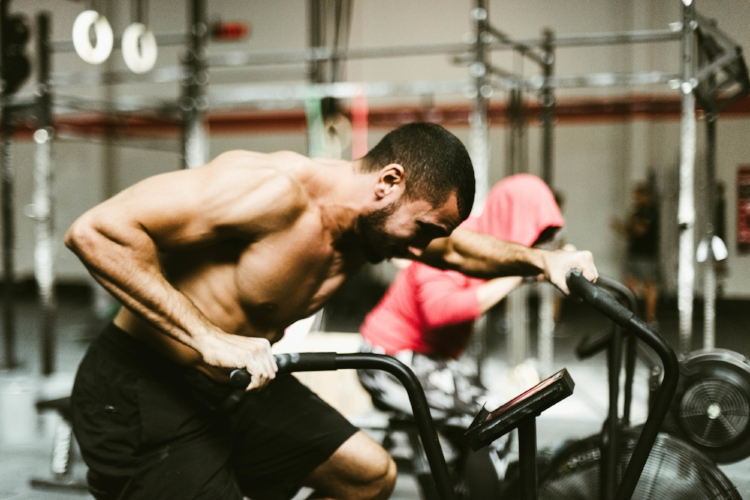 While there are multiple people telling you what you SHOULD do for your training, there are key elements to look for in any training regimine.
