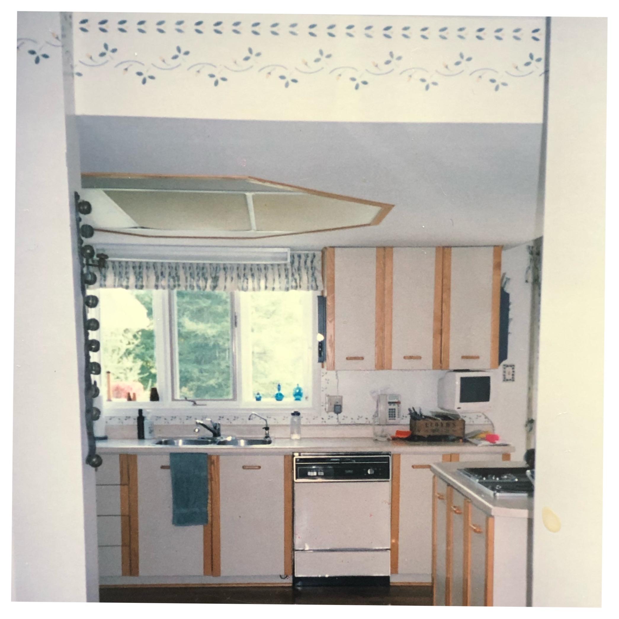 Original Kitchen circa 1989
