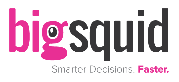 Big Squid machine learning logo
