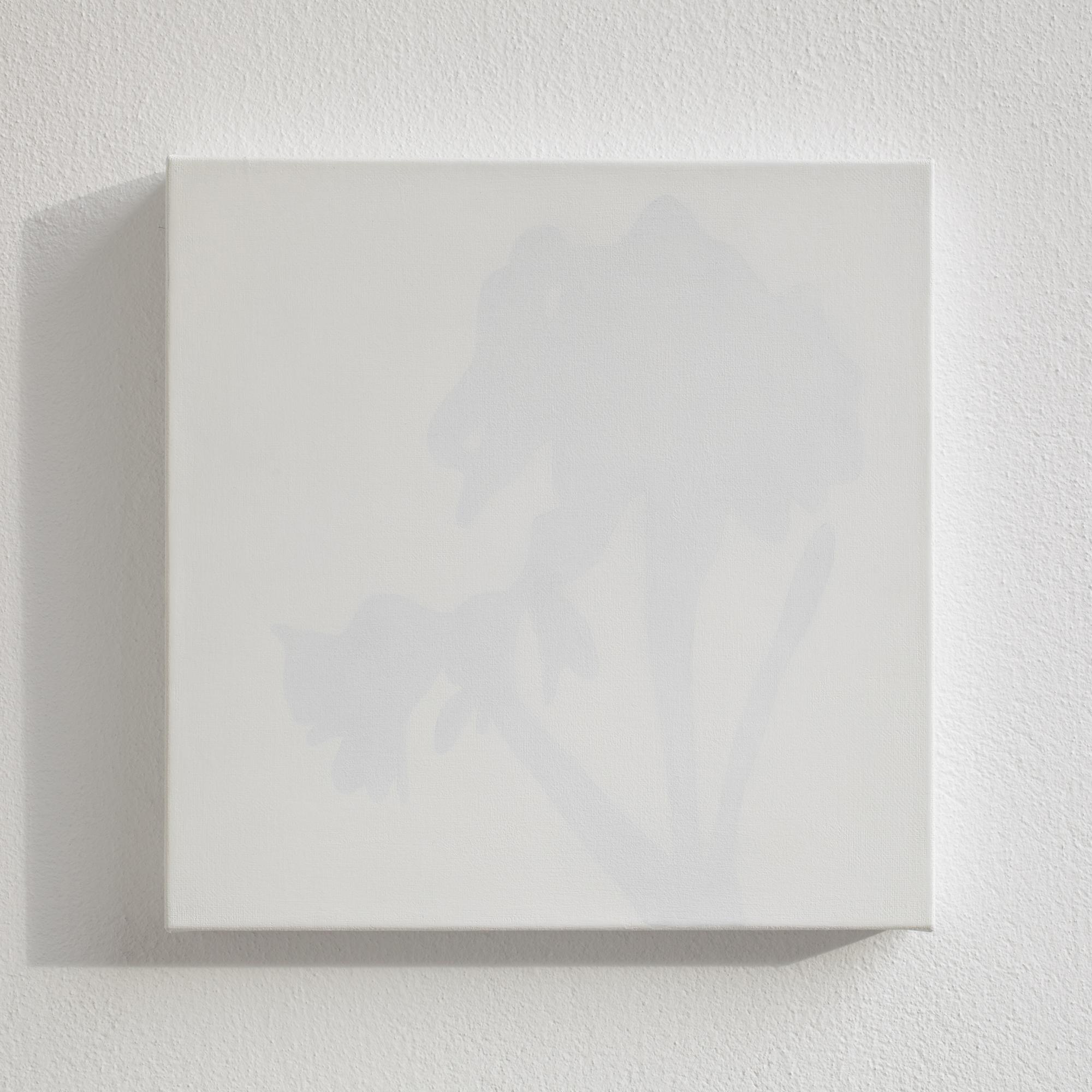 Shadow of the Stilllife, 2011, acrylic on canvas, 30 x 30 cm