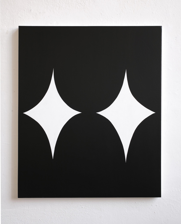 Untitled, 2010, acrylic on canvas, 100 x 120 cm