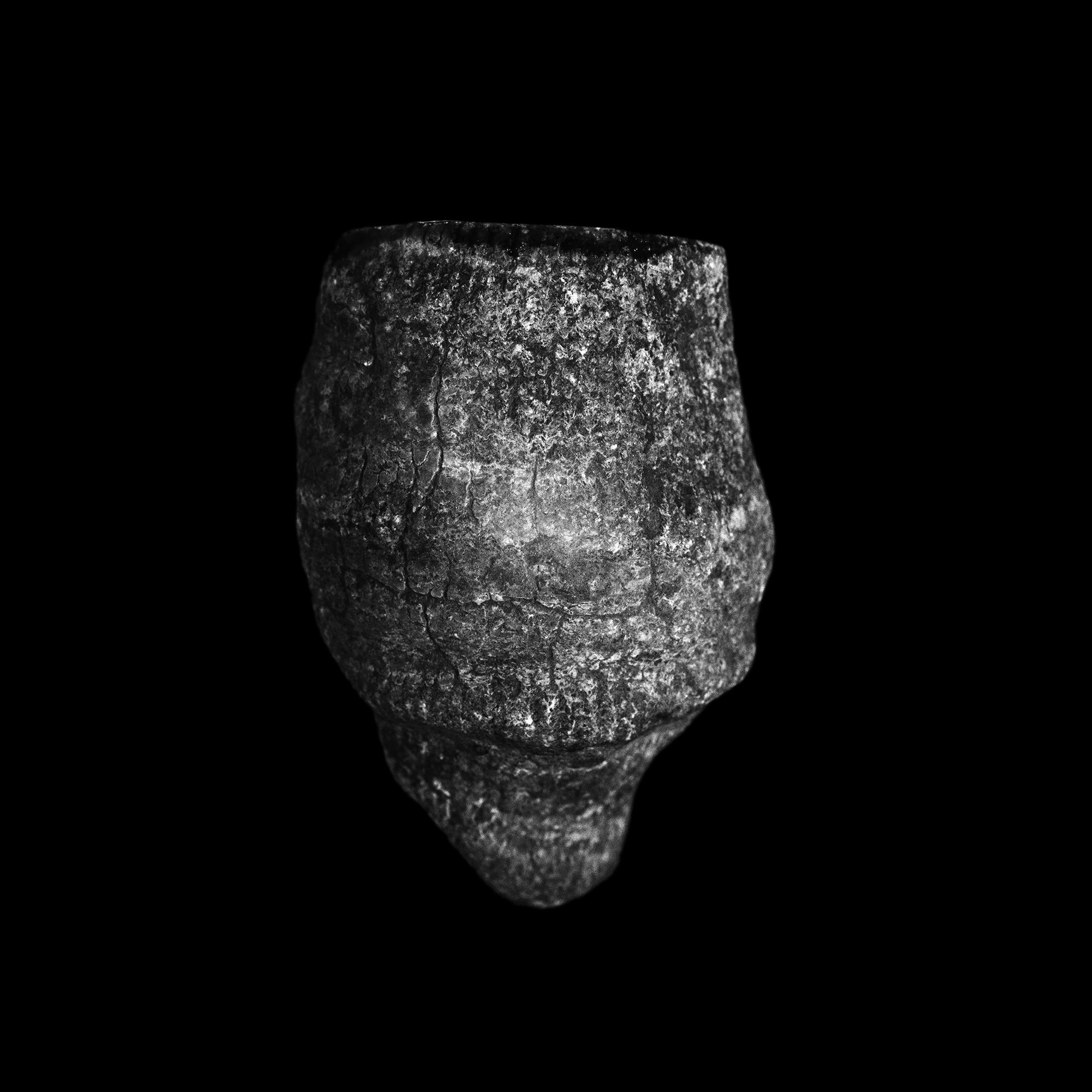 FU Fossils_31_02.jpg