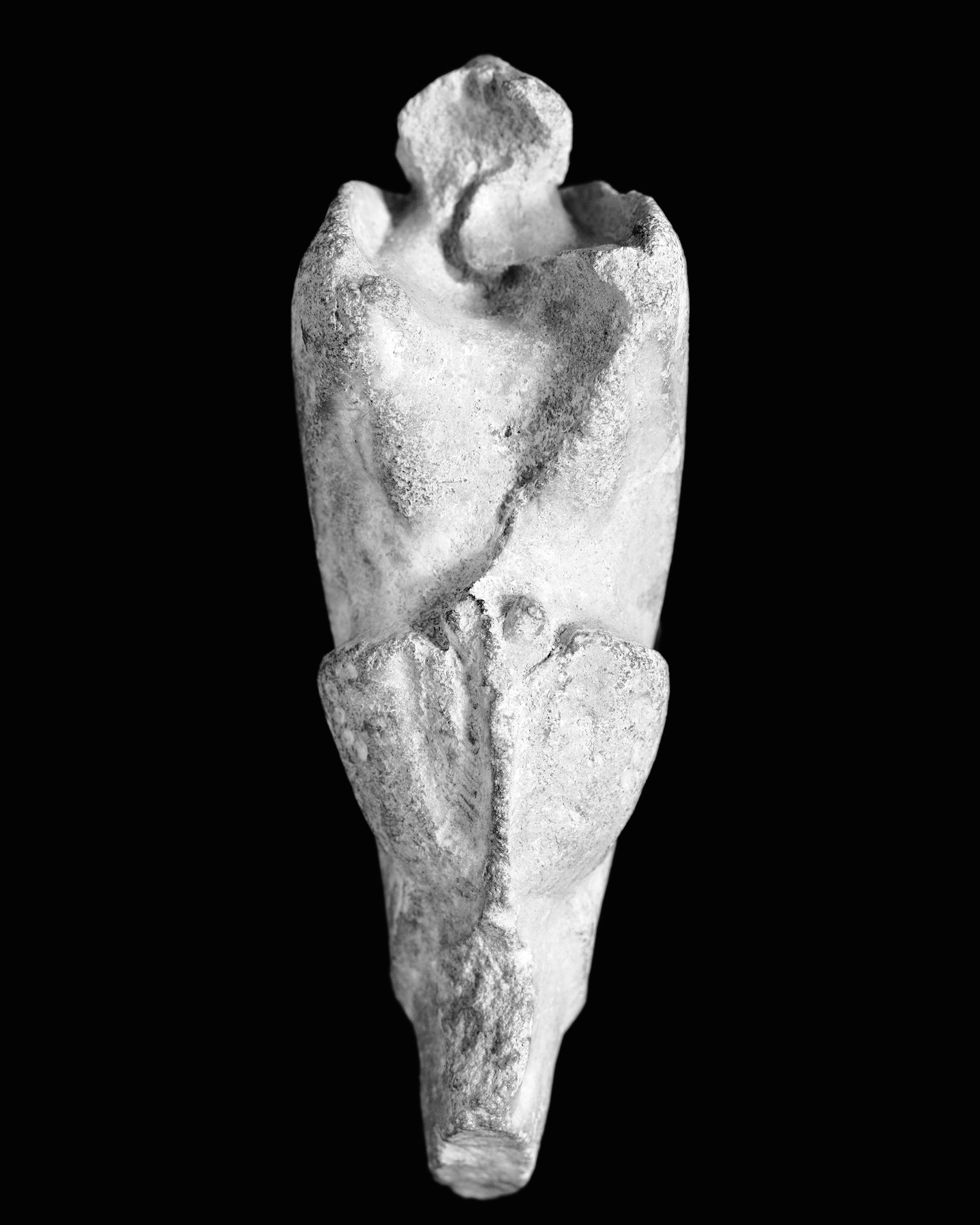 Trigonia incurva, Sow. Malm, Portland, England