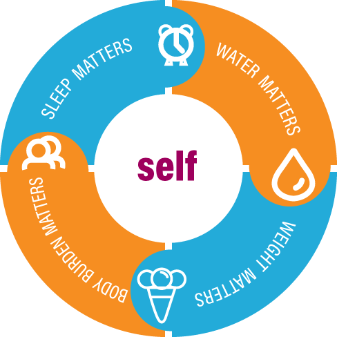Self Care Synergy Wheel.png
