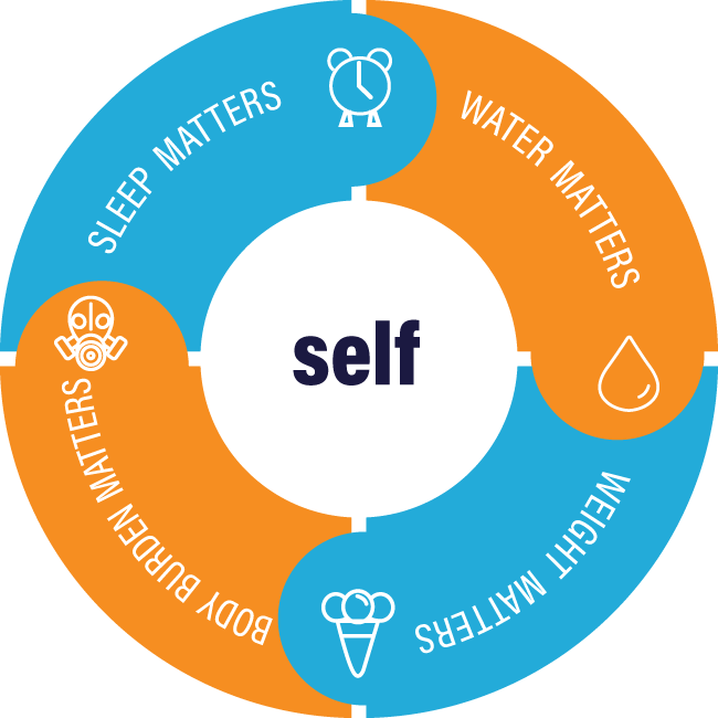 Self-Care-Synergy-Wheel.png