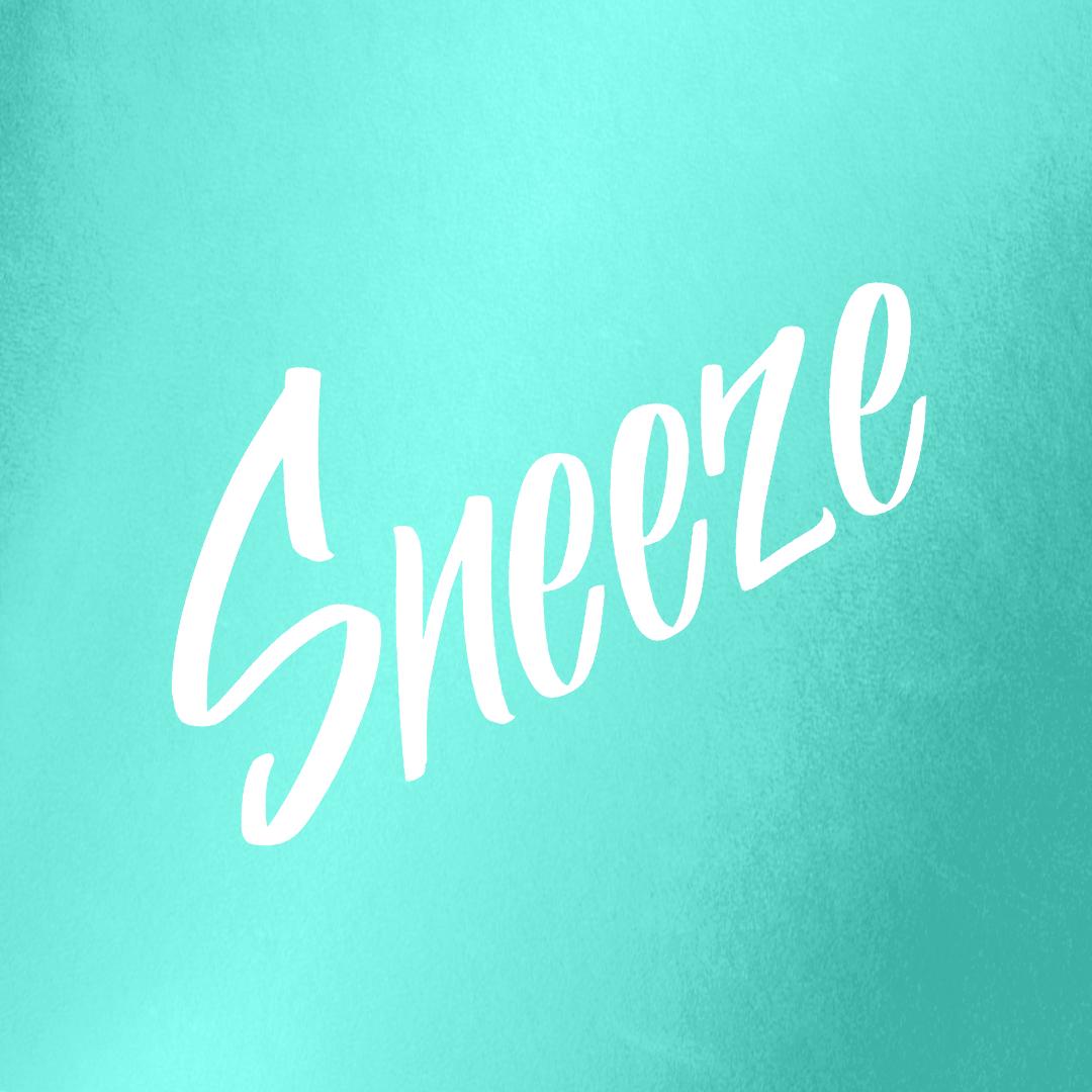 WK_Website_Product_Graphics_Sneeze.png
