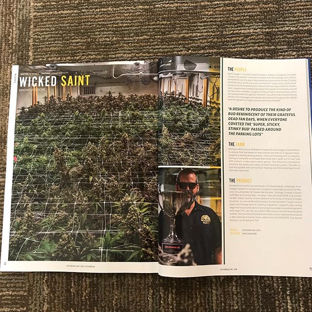 Gratitude has been the theme of my life and especially lately, just wanted to say Thank You to @DopeMagazine for taking the time to come out to our facility and putting this article together! I would also like to say Thank You to everyone who supports us and our vision to bring you that aromatic sexy kind, but most of all I want to Thank our team here that puts in the effort day in and day out to keep this train rolling Thank You🙏 we will be out at Horning's this weekend shaking our bones @StringSummit Hope to see you there!! ✌🏼 #WickedKind #KeepOregonKind #GoodVibes #HighLife #KindBud #TopShelf #CannabisCommunity #CraftCannabis #DopeCupWinner #OregonGrown #HighTimes #OregonWeed #Portland #Oregon #Dope #HighGrade #Gratitude #StayWickedBeKind 💫