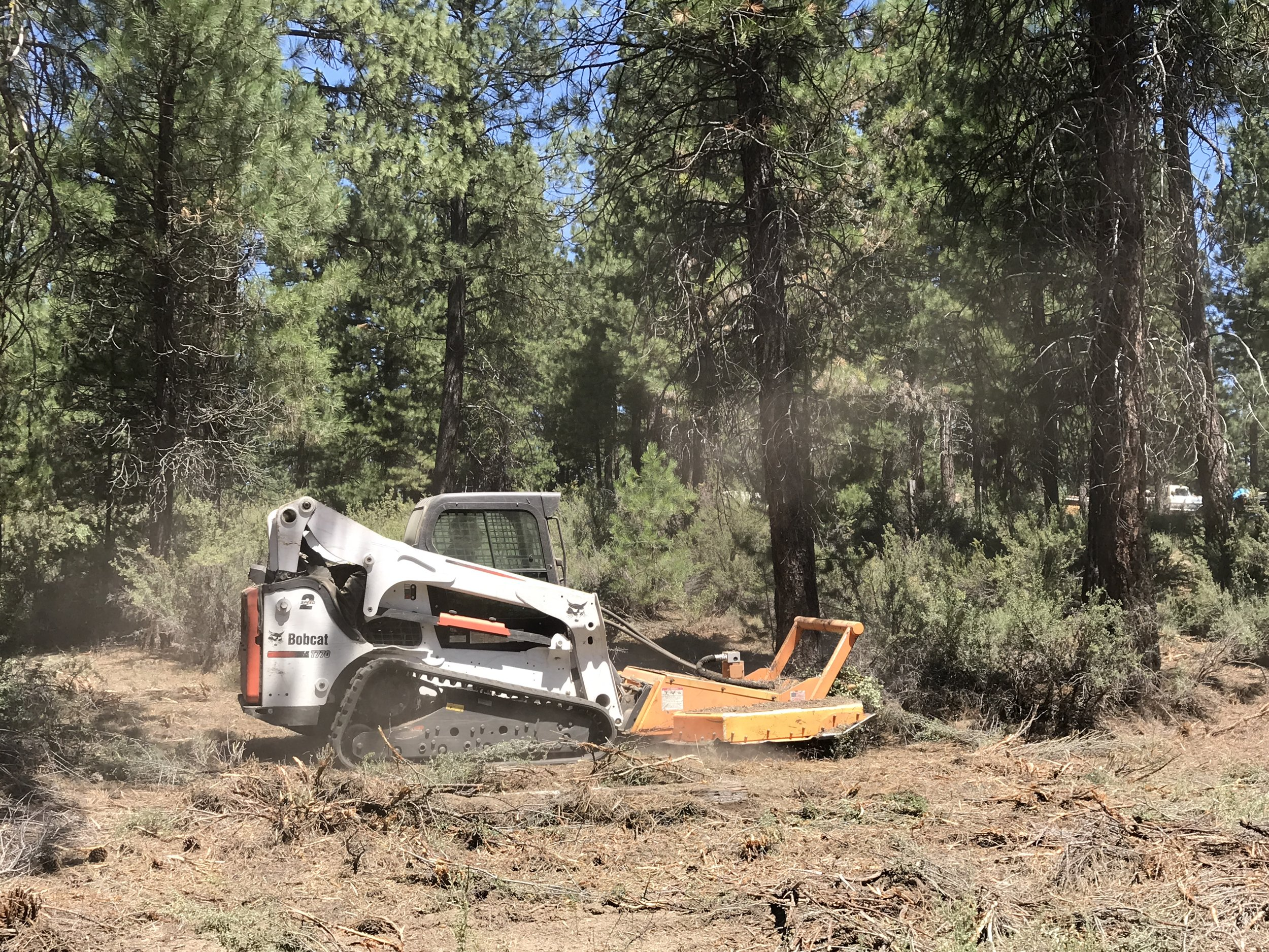 Keno Fire Chief John Ketchum uses their district Bobcat with a mower attachment to remove dense and decadent brush material and smaller diameter trees.
