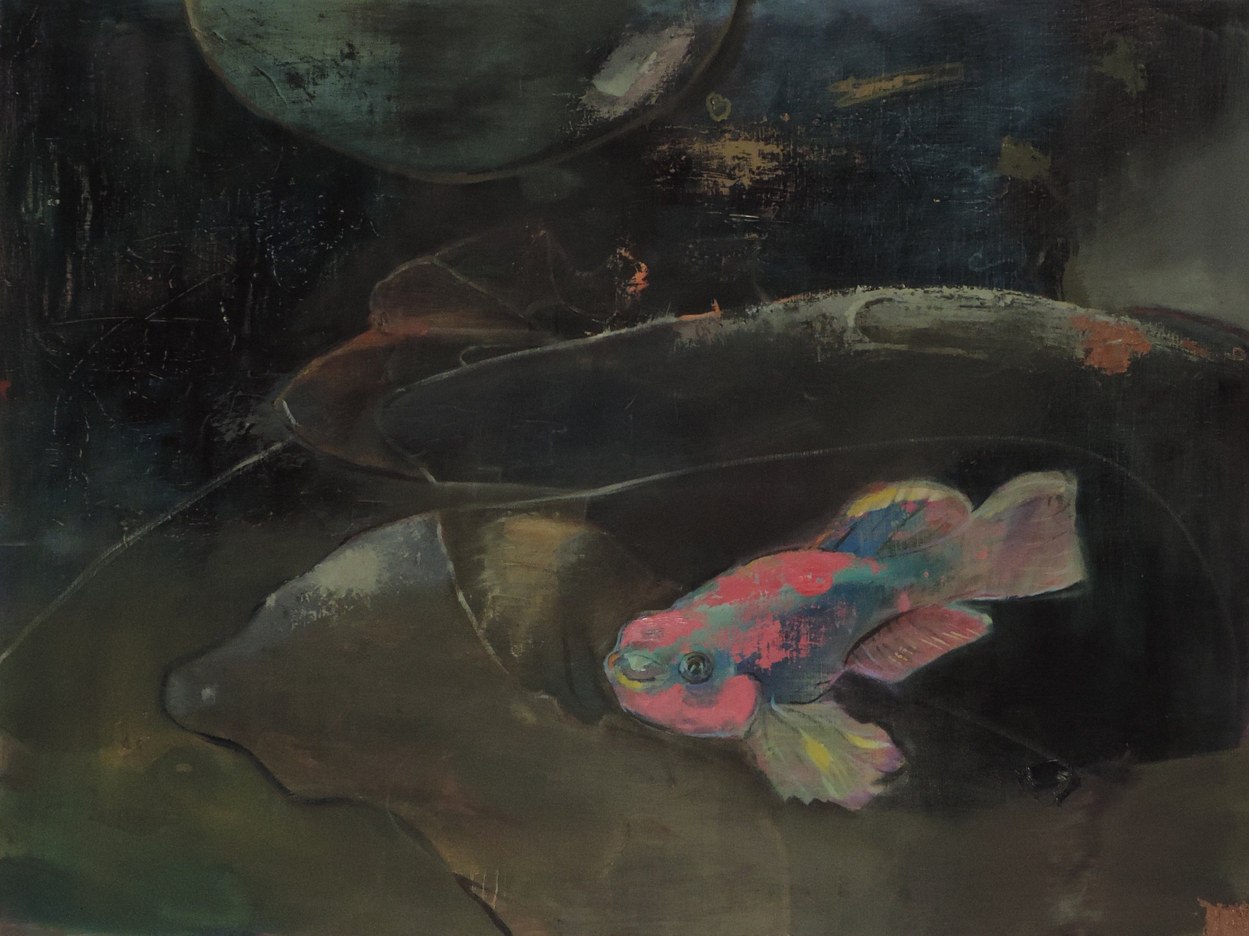 Fish Painting  oil and acrylic on canvas. 35.5 inches x 47.5 inches