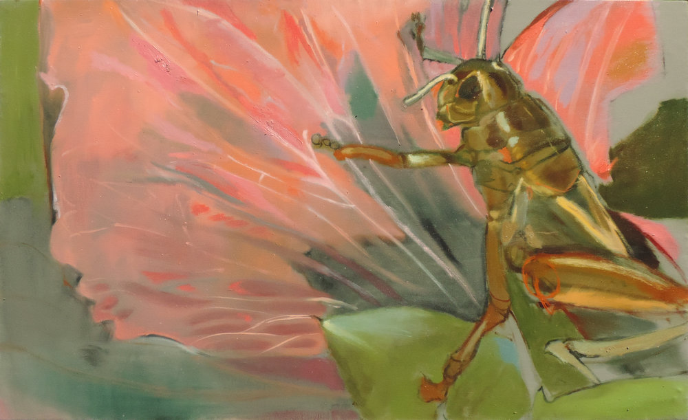Grasshopper on Hollyhock  oil on canvas, 29x48 inches