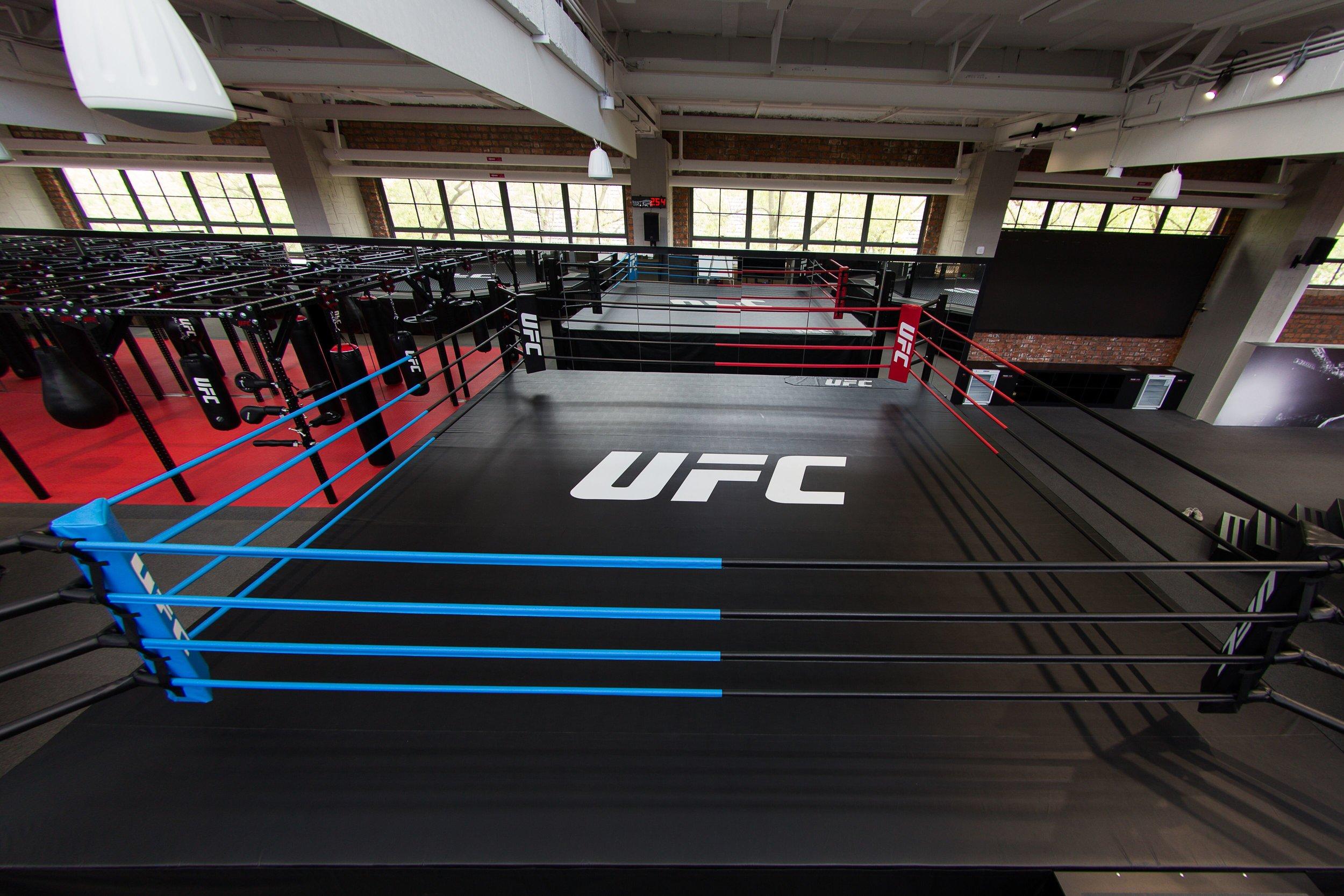 pi-boxing-ring.jpeg