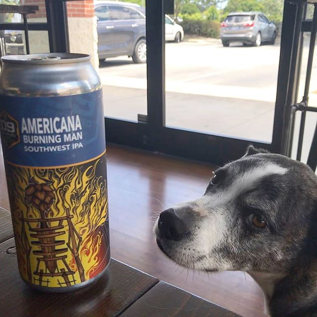 @d9brewing Burning Man SWIPA with Amarillo, El Dorado, and Hatch Chiles. @hoitlesdlockpaw approved.  #craftbeer #wilmington #wilmingtonnc #ncbeer #local #portcity #sessionbeermarket #sessionbm #LitAF