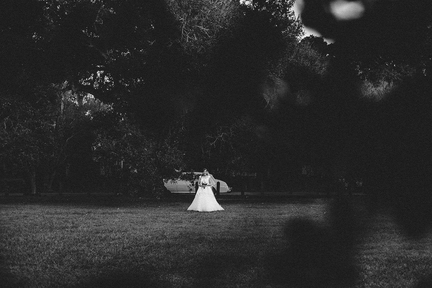 wedding photographer in new orleans