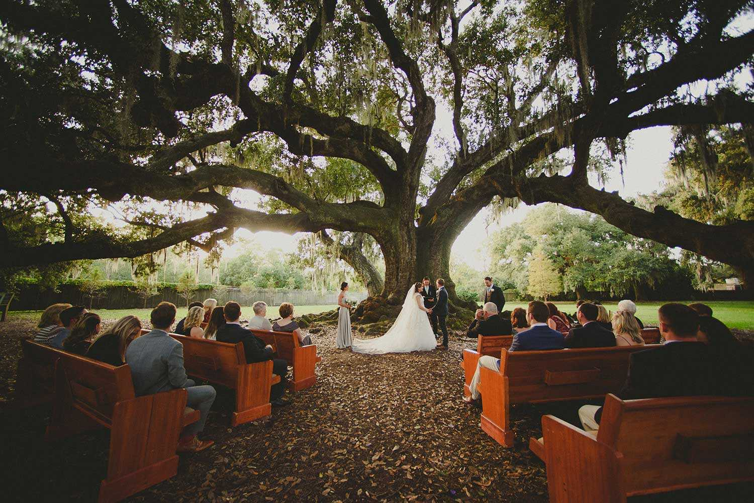 audubon-tree-of-life-wedding-new-orleans+(17).jpg