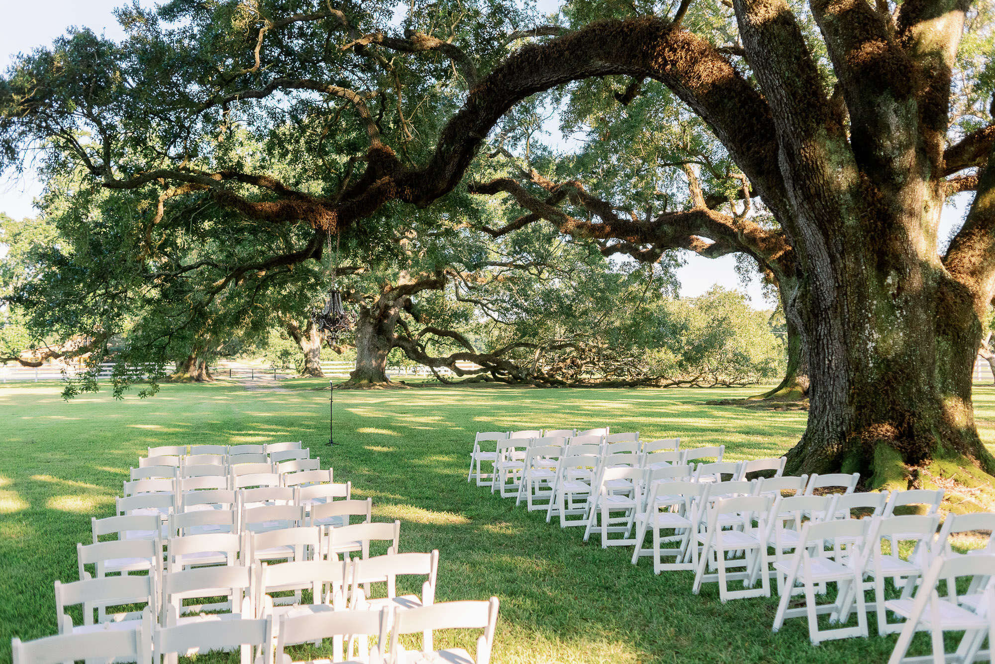 Stella Plantation Wedding Photographer