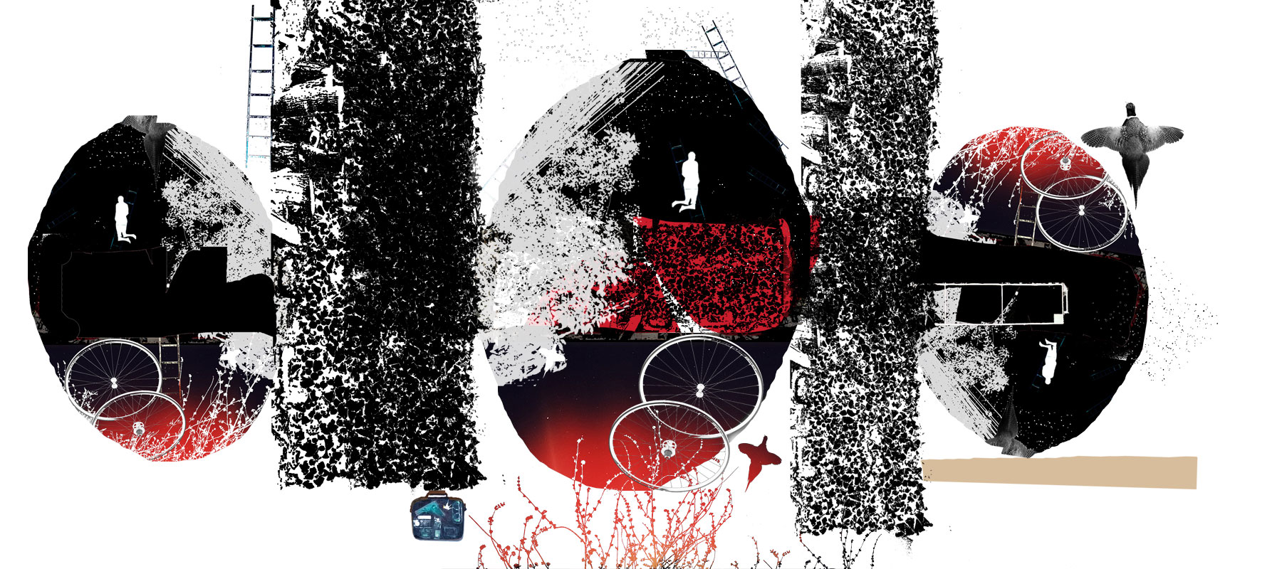 2008-10-15-z-eggs_torn3.jpg