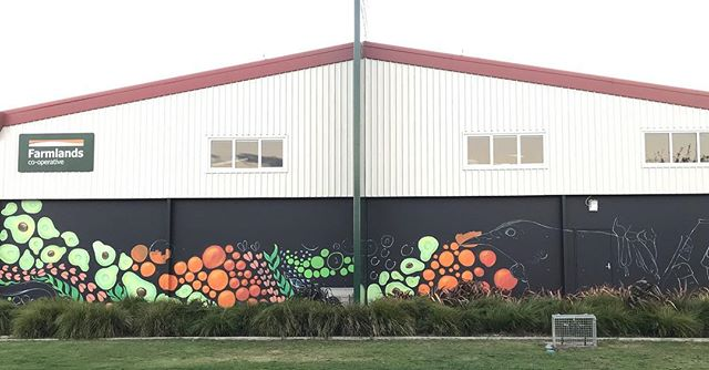 Our 10th mural is taking shape! If you're in the Bay of Plenty come down to Farmlands Tauranga on Saturday 4 May from 10:30am. You'll be among the first to witness our latest piece of art and you'll also get a spin of our winning wheel! #heartofthecommunitynz #erikapearceartist #farmlands #tauranga #art #mural