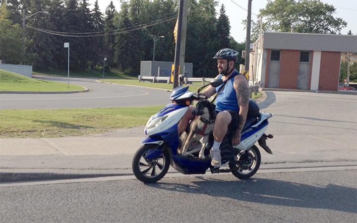 On the way to Kingston, Ontario