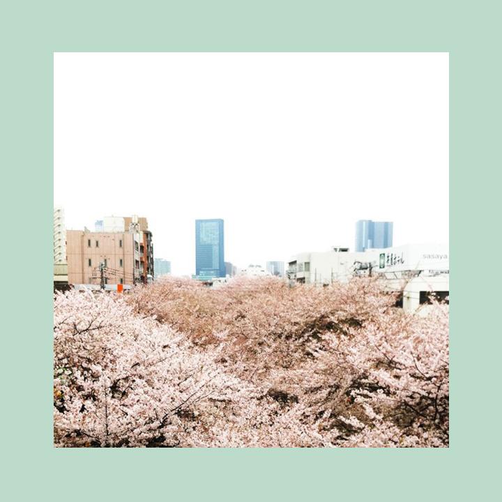 japanbound.jpg