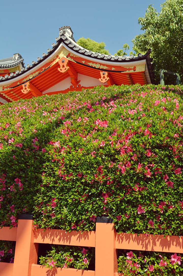 Yasaka Shrine gate
