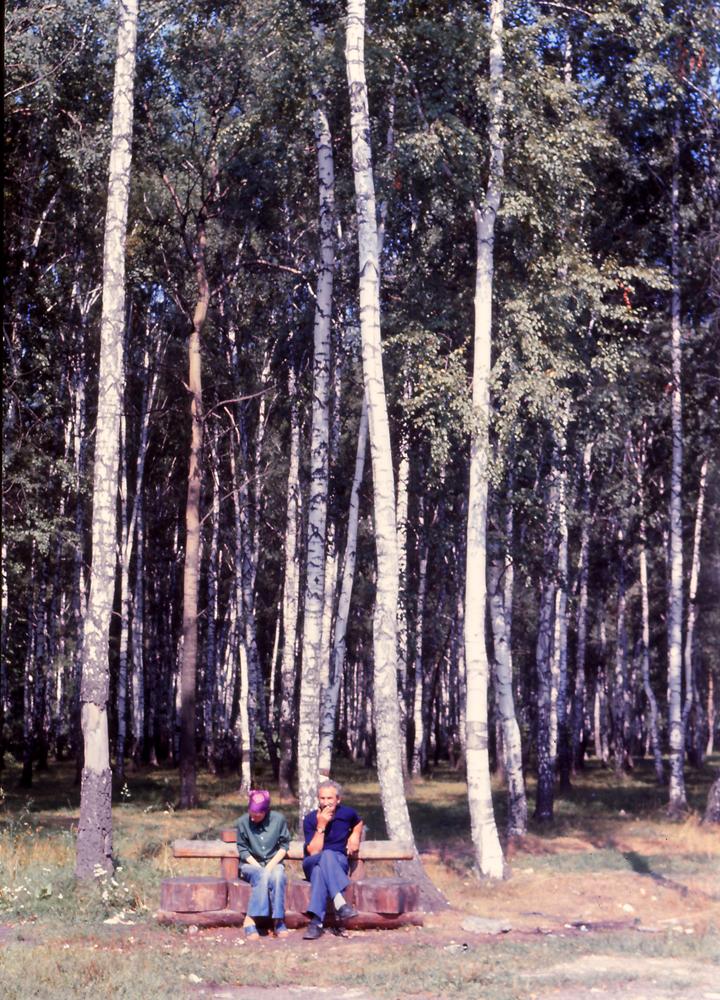 d-breze12s.jpg