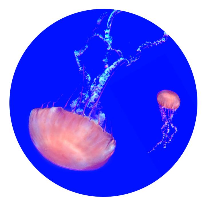 aqua4.jpg