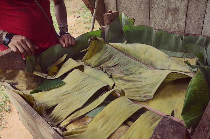 Cocoa production, fermentation