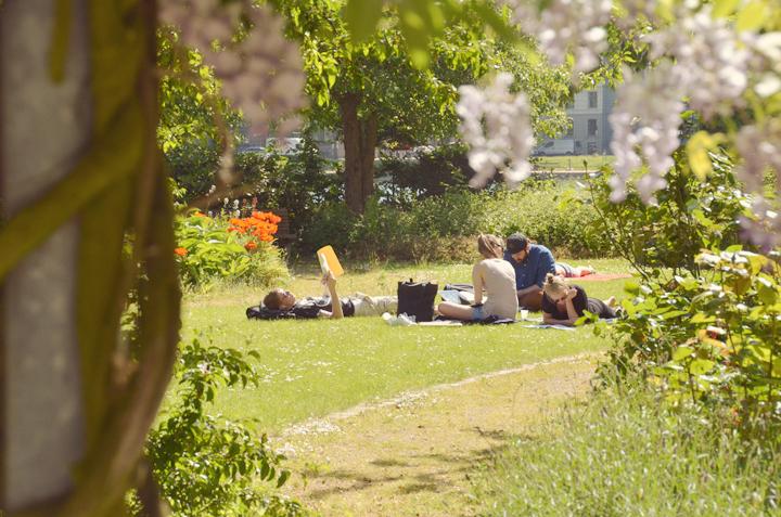 apt-garden.jpg