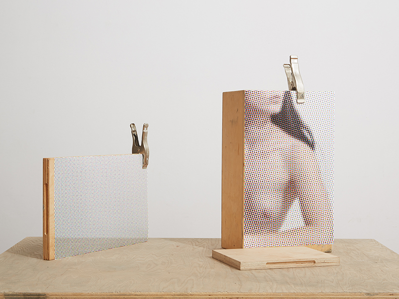 Apple Boxes and Plywood with Halftone Prints of Sarah and Set  2015