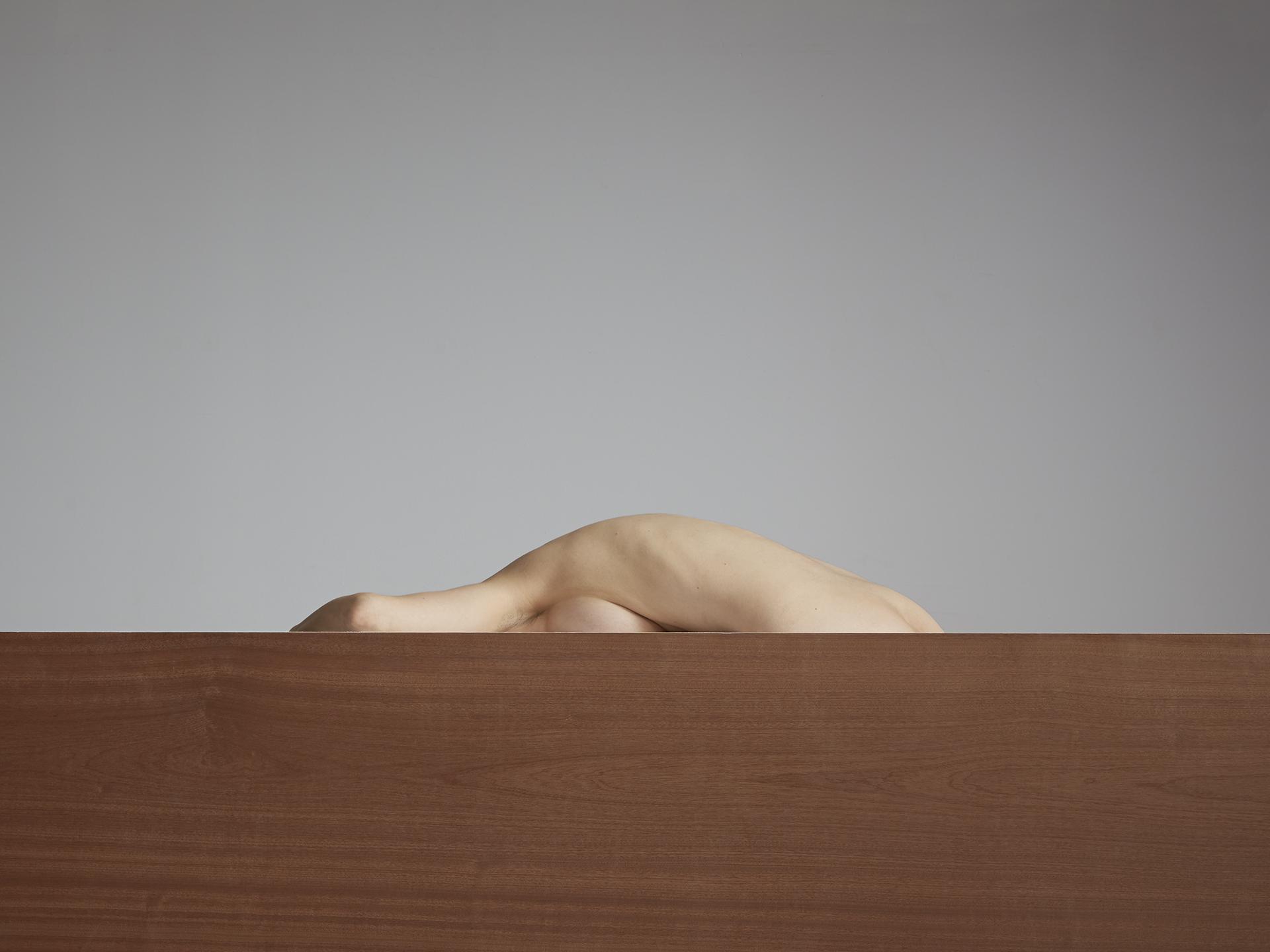 Segmented Body with Walnut  2014